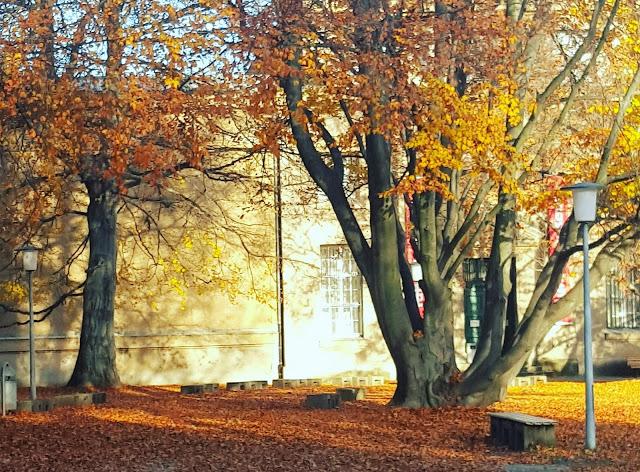grossekoepfe, Berliner Familienblog,