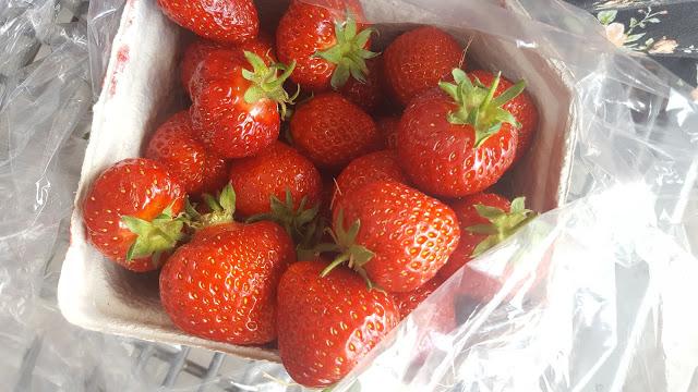 Die Kinder lieben Karls, Die Kinder lieben Erdbeeren
