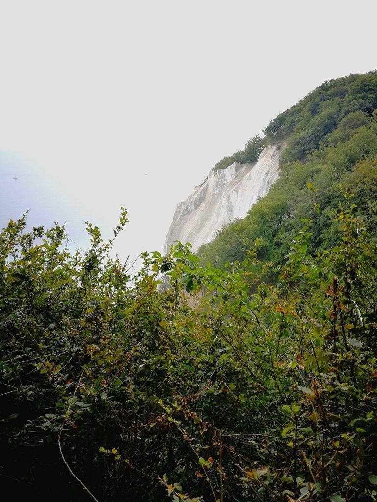 Kreidefelsen Insel Mön