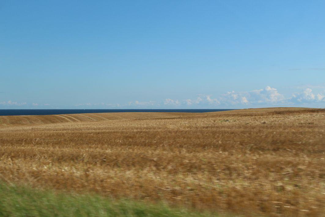 Landschaften bei Nyord