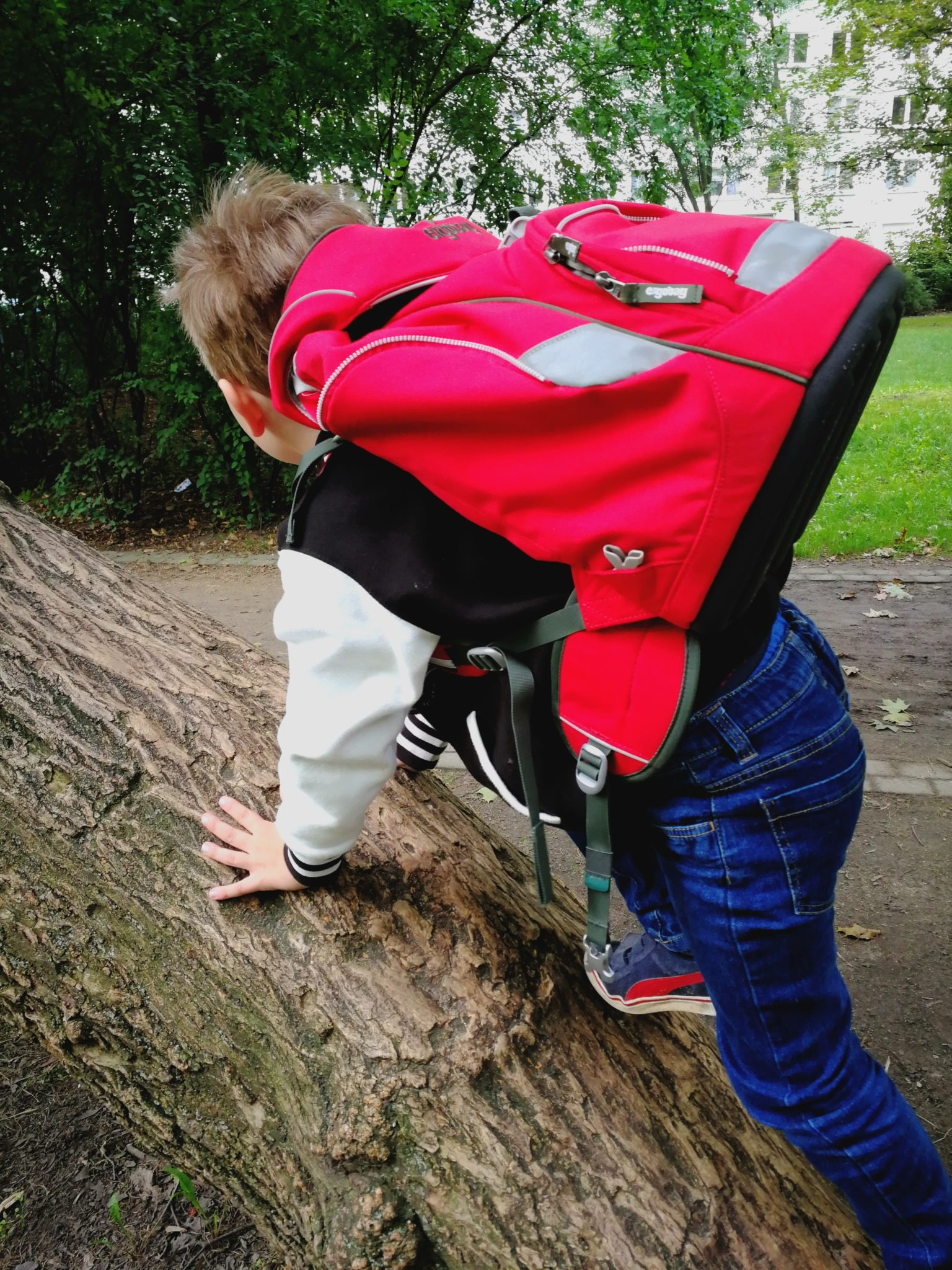 Rucksack Ergobag kletter
