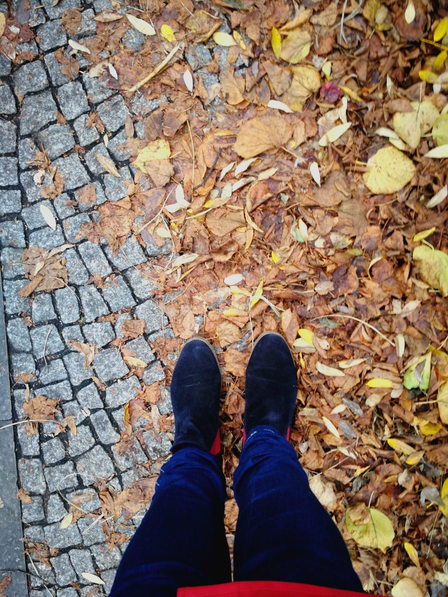Herbstunilaub