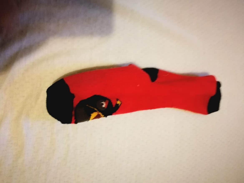 der rote Piepmatz