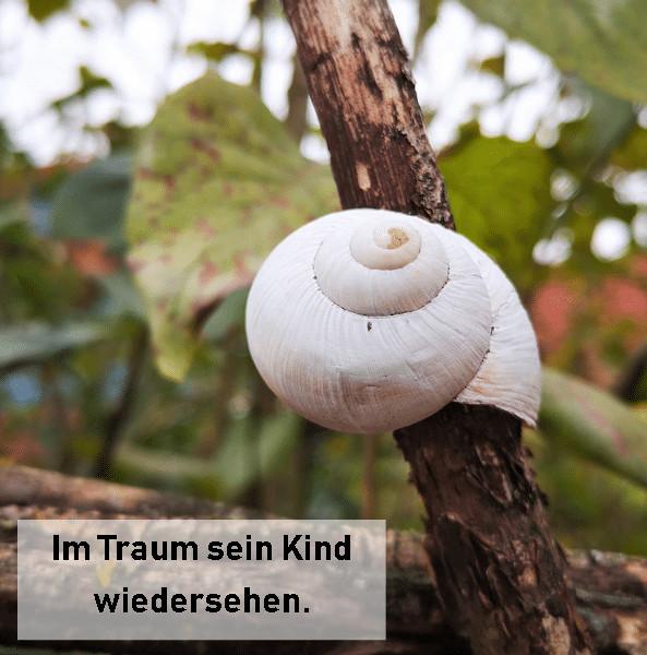 im Traum dem Kind begegnen_grossekoepfe.de