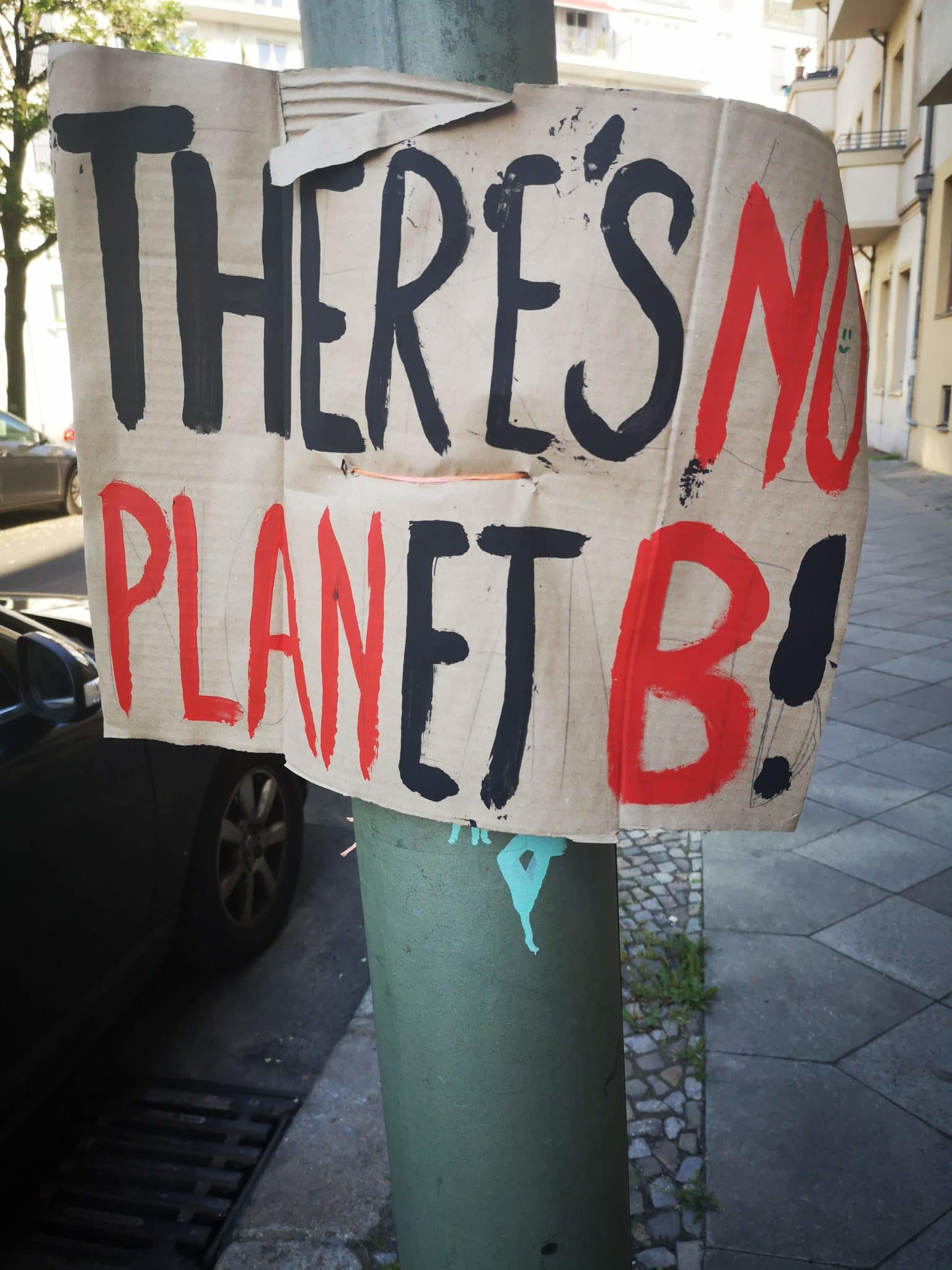Ein gewelltes Plakat auf dem steht: There is no Planet b
