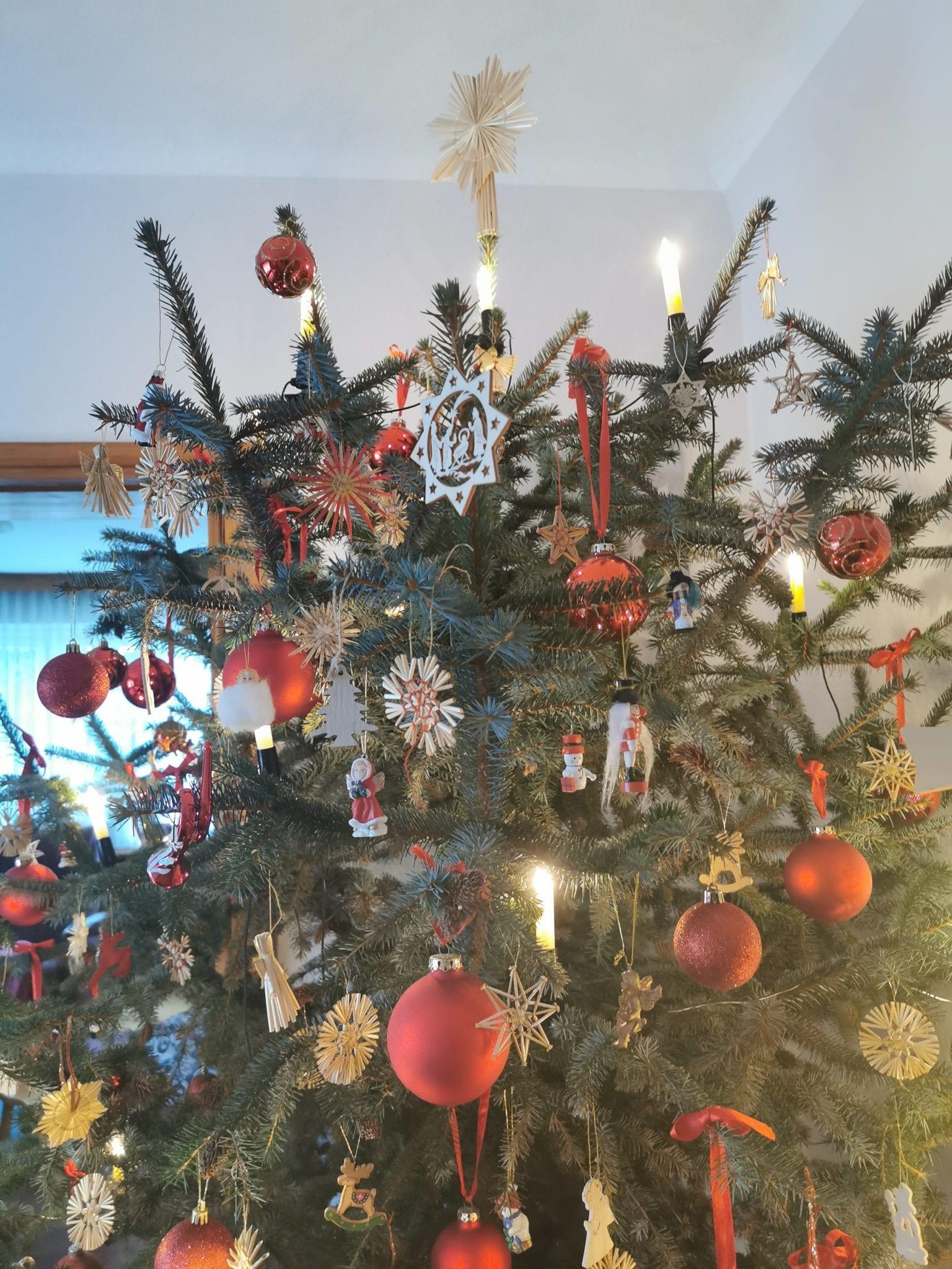 Weihnachtsbaum_grossekoepfe.de