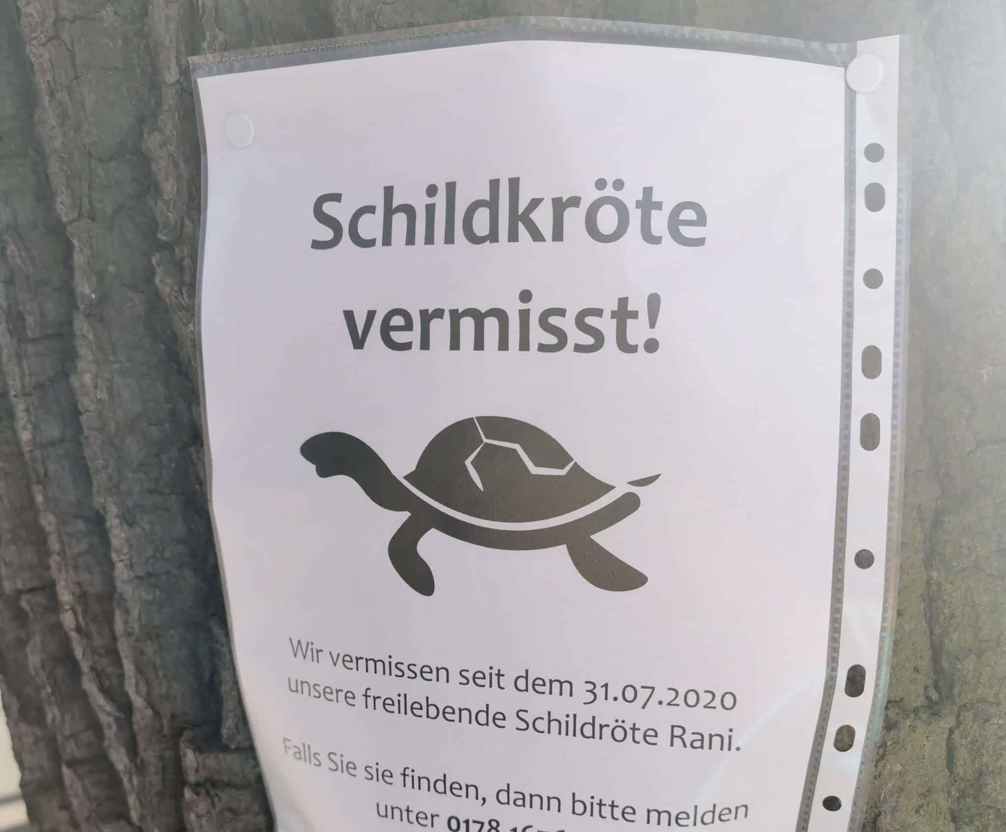 Ein Wochenende in Wolfsburg mit Kindern_grossekoepfe.de