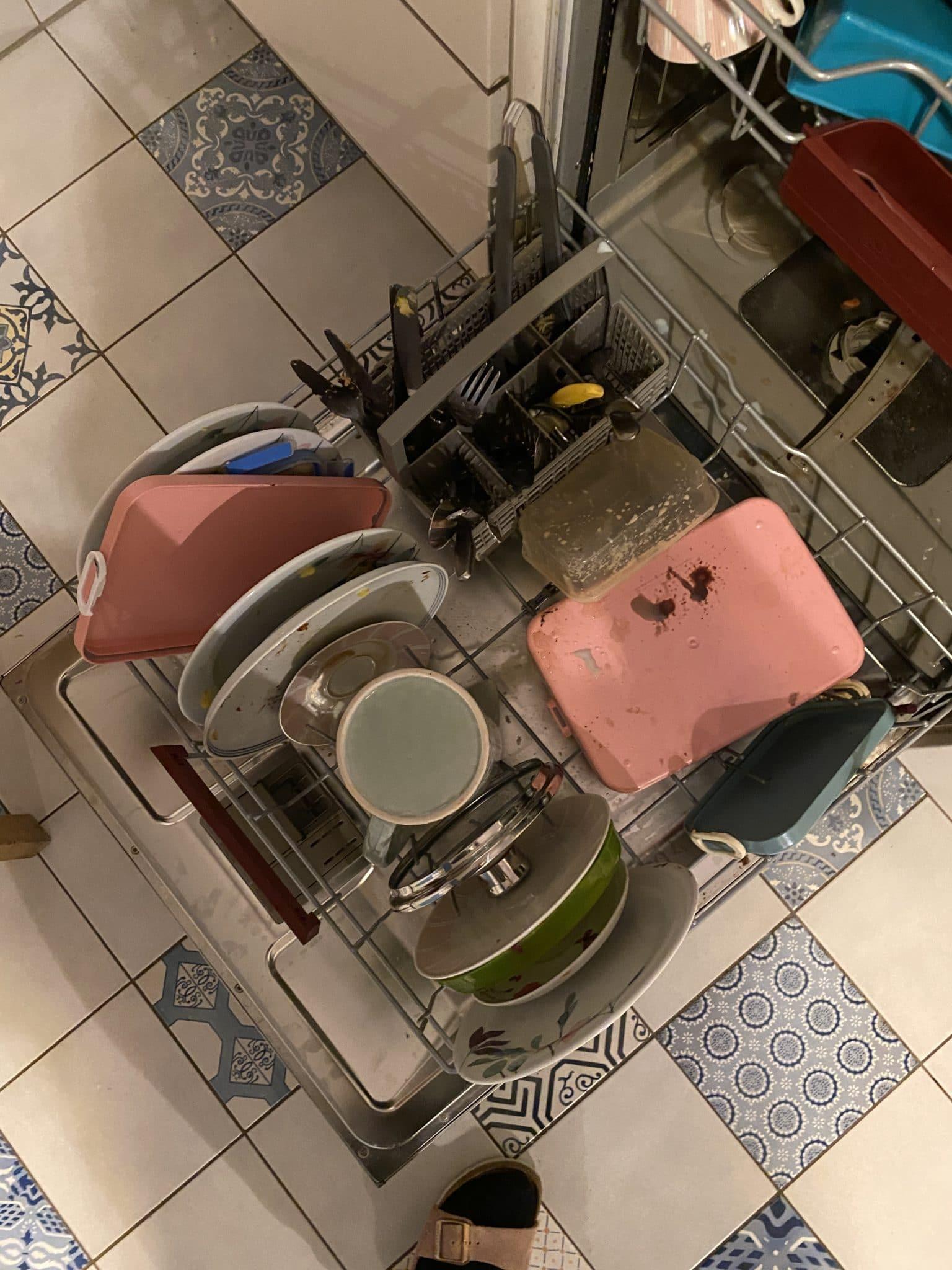 #5 Ich mach mal bisschen Hausarbeit.