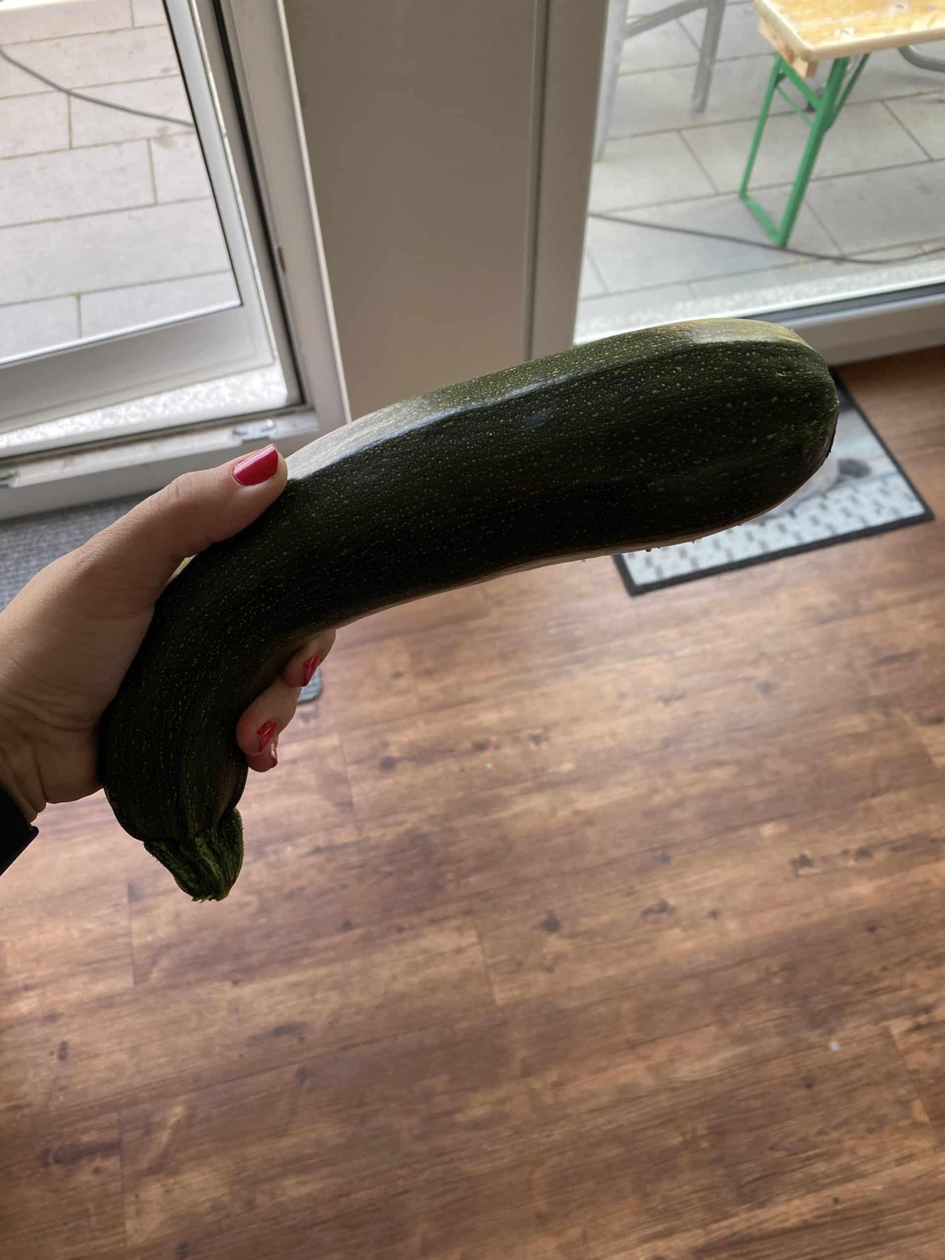 Ich pflücke etwas Zucchini im Garten. Peng PEng.